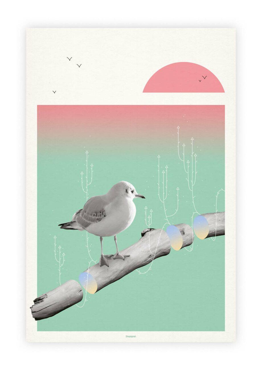 Affiche poster goéland bois flotté