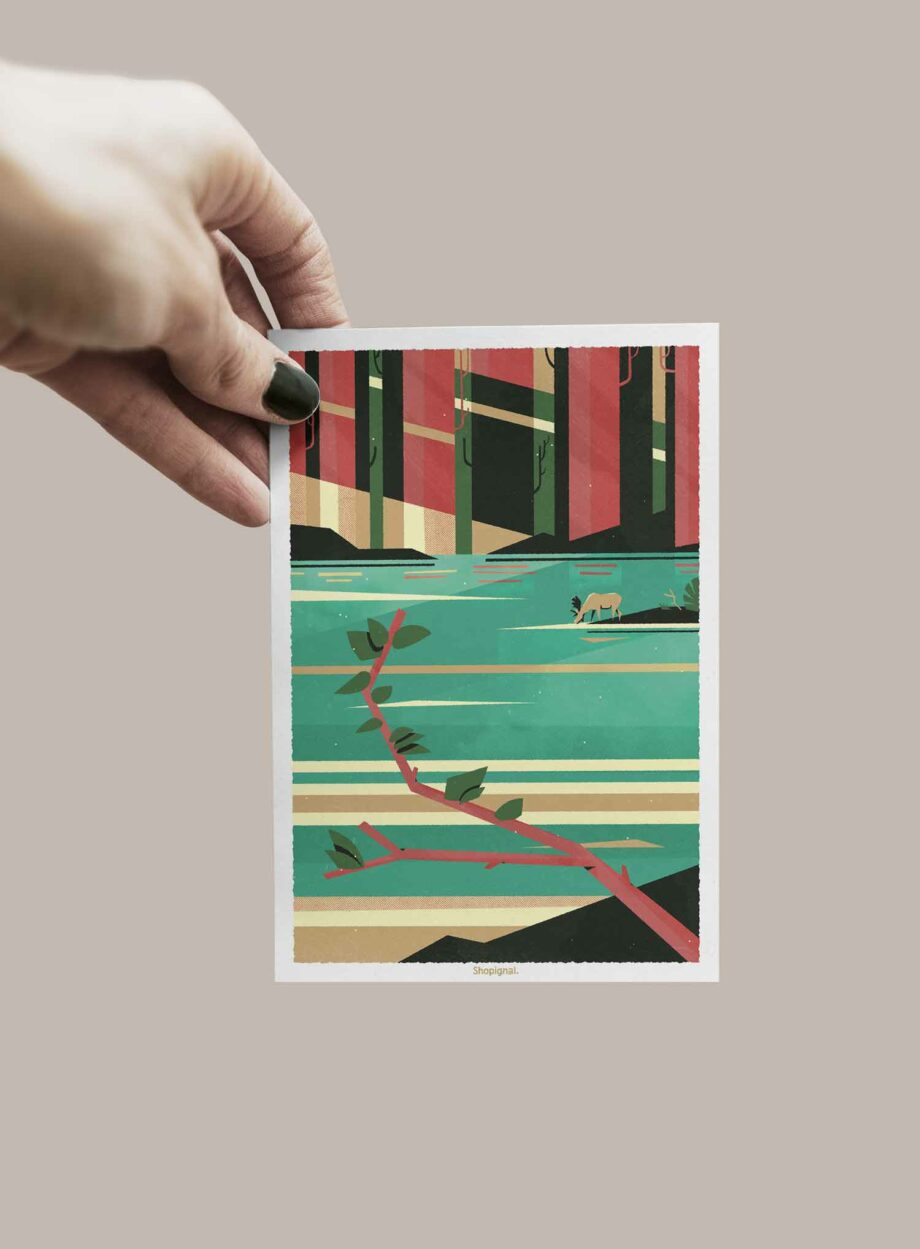 carte postale élan forêt